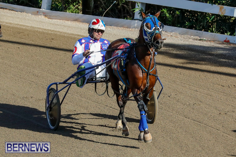 Harness-Pony-Racing-Bermuda-December-17-2017-5466