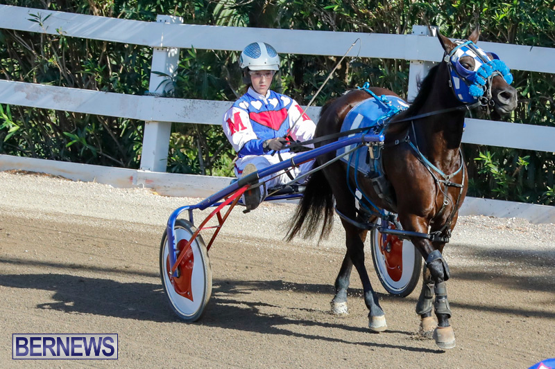 Harness-Pony-Racing-Bermuda-December-17-2017-5468
