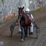 Harness Pony Racing Bermuda, December 17 2017-5482