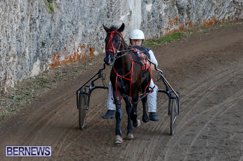 Harness-Pony-Racing-Bermuda-December-17-2017-5482