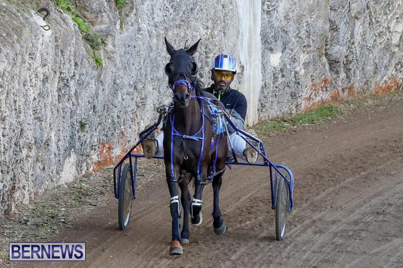 Harness-Pony-Racing-Bermuda-December-17-2017-5495