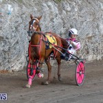 Harness Pony Racing Bermuda, December 17 2017-5499