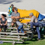 Harness Pony Racing Bermuda, December 17 2017-5575
