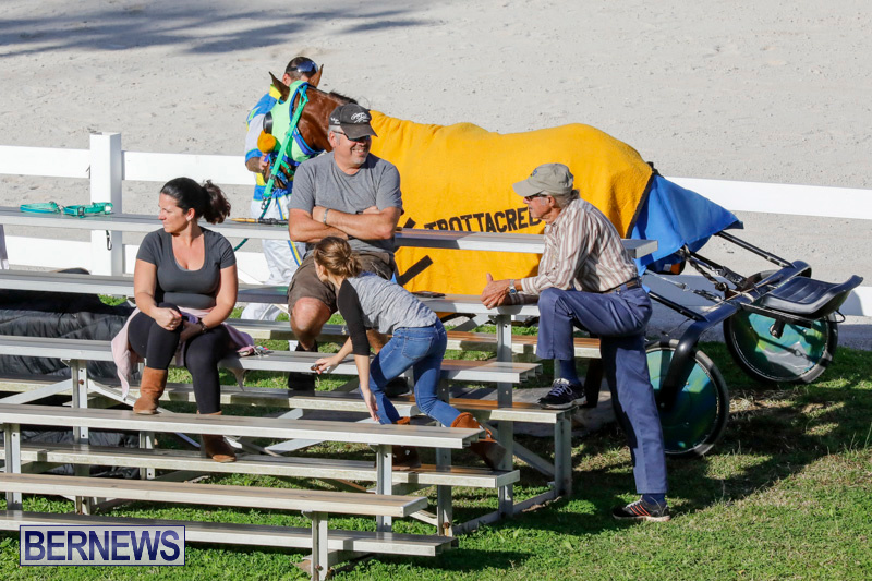Harness-Pony-Racing-Bermuda-December-17-2017-5575