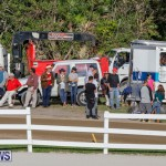 Harness Pony Racing Bermuda, December 17 2017-5595