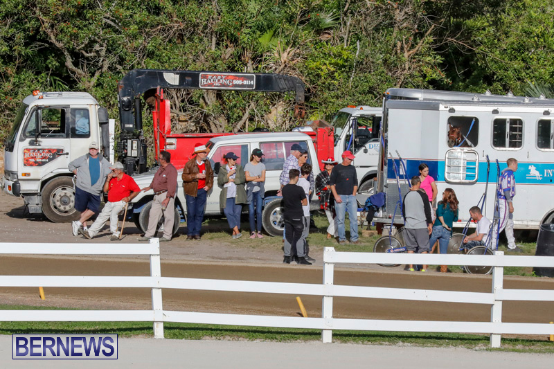 Harness-Pony-Racing-Bermuda-December-17-2017-5595