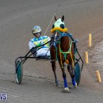 Harness Pony Racing Bermuda, December 17 2017-5624