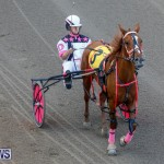 Harness Pony Racing Bermuda, December 17 2017-5635
