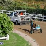 Harness Pony Racing Bermuda, December 17 2017-5645