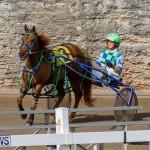 Harness Pony Racing Bermuda, December 26 2017-8144