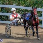 Harness Pony Racing Bermuda, December 26 2017-8149