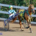 Harness Pony Racing Bermuda, December 26 2017-8153