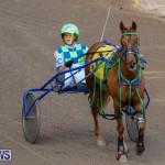 Harness Pony Racing Bermuda, December 26 2017-8156
