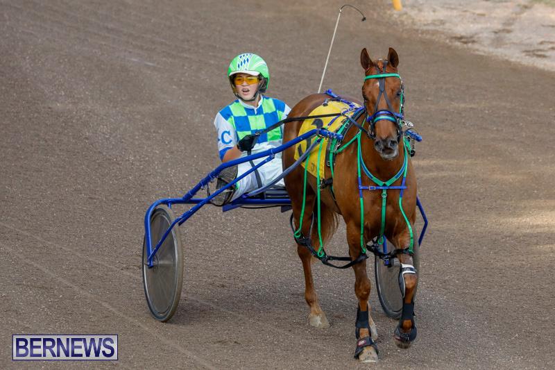Harness-Pony-Racing-Bermuda-December-26-2017-8156