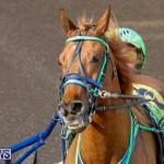 Harness Pony Racing Bermuda, December 26 2017-8157
