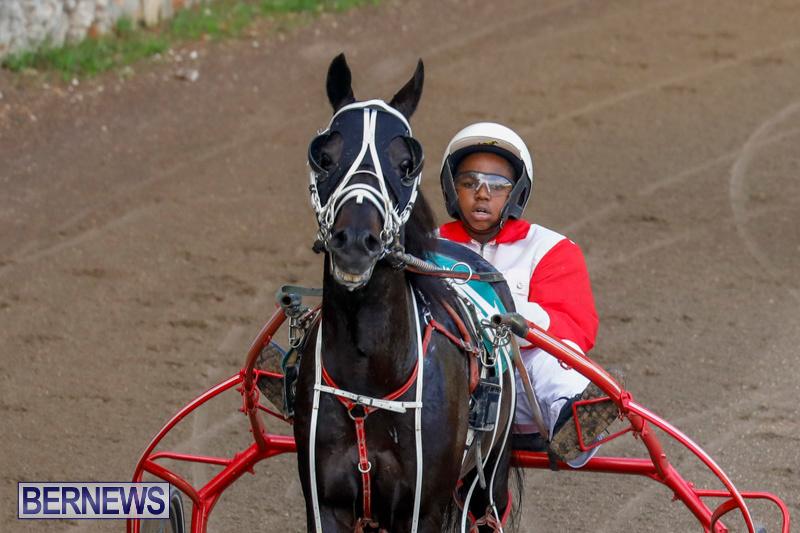 Harness-Pony-Racing-Bermuda-December-26-2017-8168