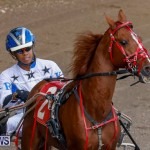 Harness Pony Racing Bermuda, December 26 2017-8175