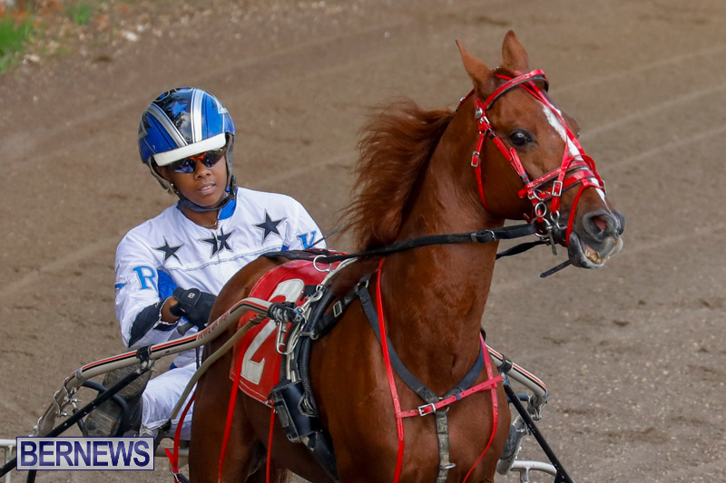 Harness-Pony-Racing-Bermuda-December-26-2017-8175