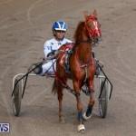 Harness Pony Racing Bermuda, December 26 2017-8177