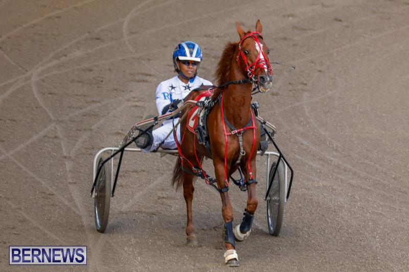 Harness-Pony-Racing-Bermuda-December-26-2017-8177