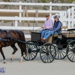 Harness Pony Racing Bermuda, December 26 2017-8239
