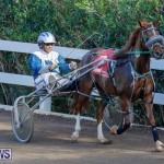Harness Pony Racing Bermuda, December 26 2017-8287