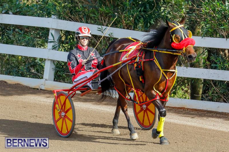 Harness-Pony-Racing-Bermuda-December-26-2017-8334