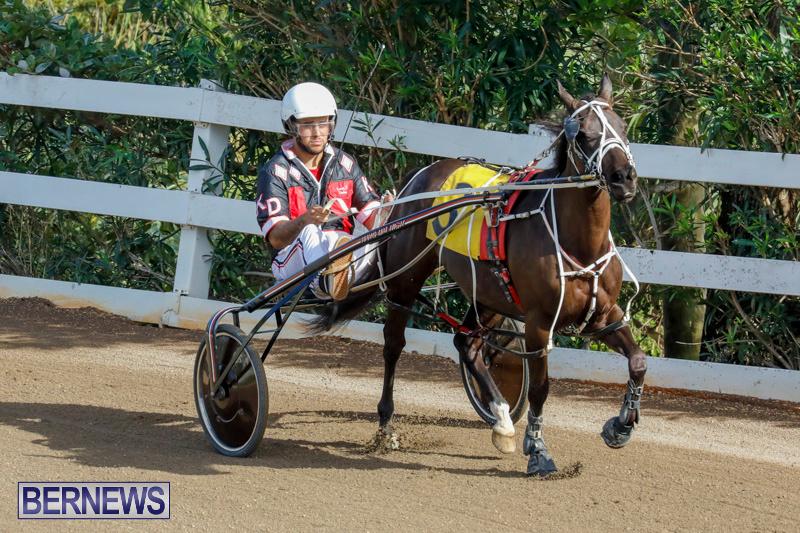 Harness-Pony-Racing-Bermuda-December-26-2017-8339