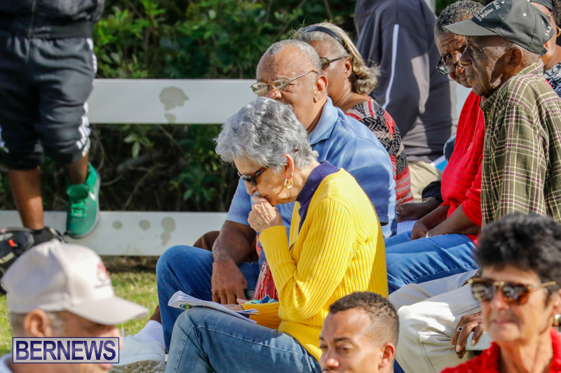 Harness-Pony-Racing-Bermuda-December-26-2017-8361