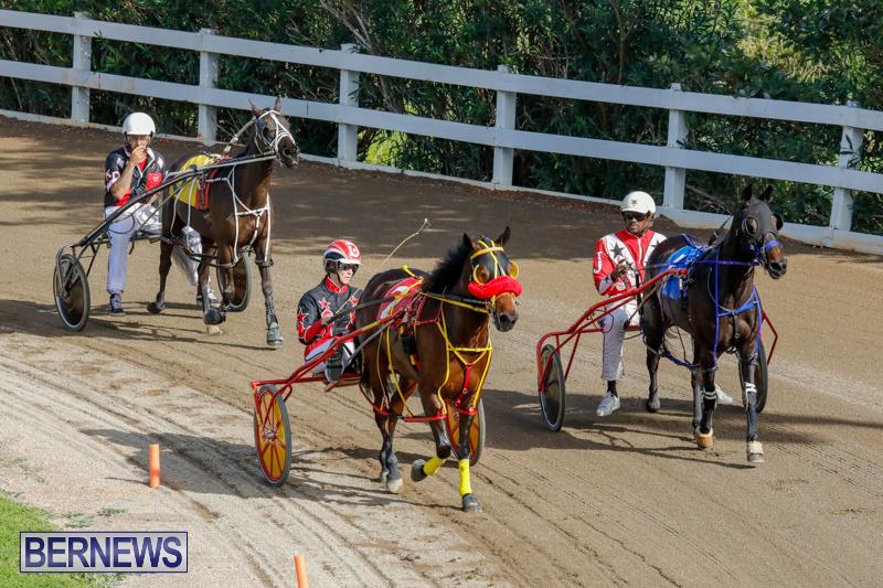 Harness-Pony-Racing-Bermuda-December-26-2017-8366