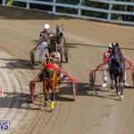 Harness Pony Racing Bermuda, December 26 2017-8371