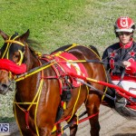 Harness Pony Racing Bermuda, December 26 2017-8376