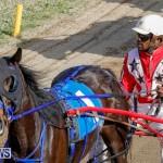 Harness Pony Racing Bermuda, December 26 2017-8378