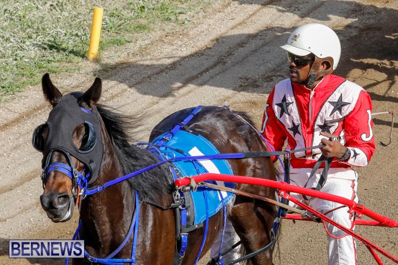 Harness-Pony-Racing-Bermuda-December-26-2017-8378