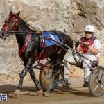 Harness Pony Racing Bermuda, December 26 2017-8385