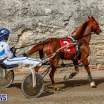 Harness Pony Racing Bermuda, December 26 2017-8392