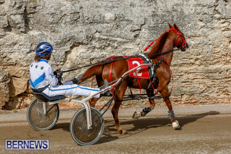 Harness-Pony-Racing-Bermuda-December-26-2017-8392