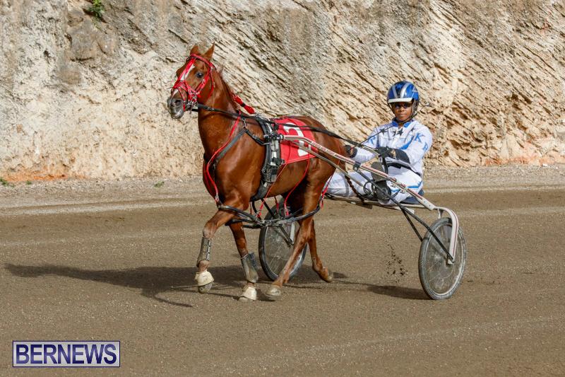 Harness-Pony-Racing-Bermuda-December-26-2017-8400