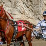 Harness Pony Racing Bermuda, December 26 2017-8401