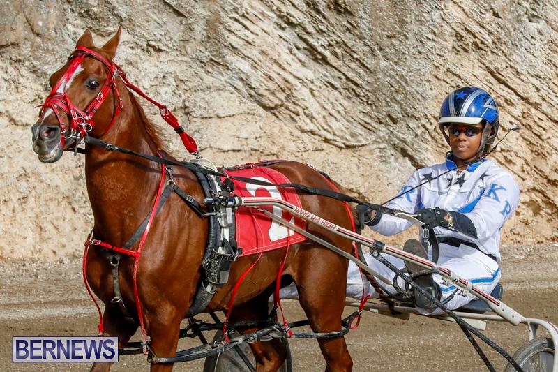 Harness-Pony-Racing-Bermuda-December-26-2017-8401