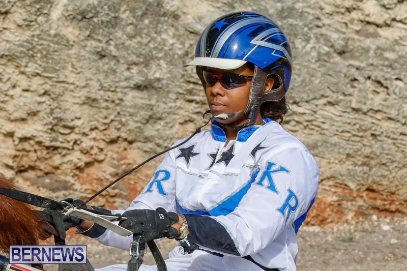 Harness-Pony-Racing-Bermuda-December-26-2017-8406