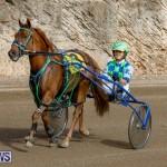 Harness Pony Racing Bermuda, December 26 2017-8410