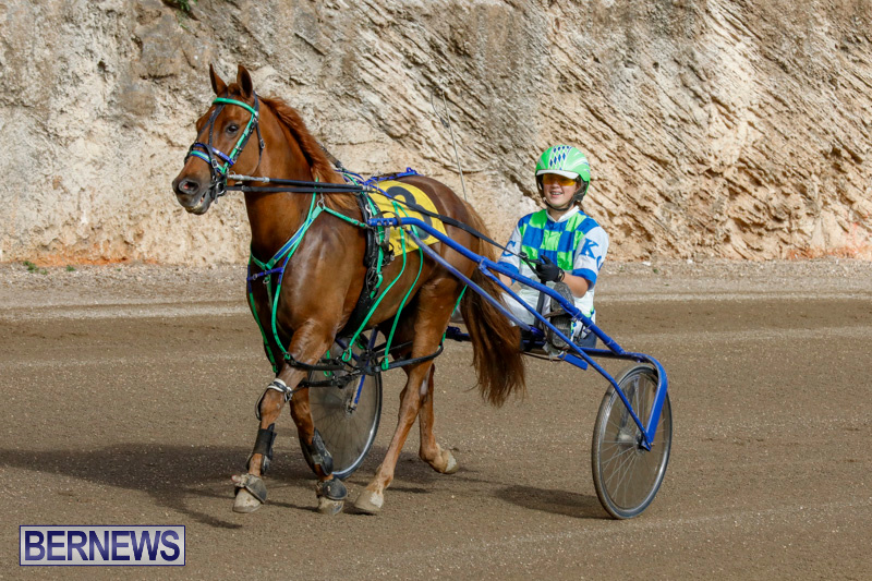 Harness-Pony-Racing-Bermuda-December-26-2017-8410