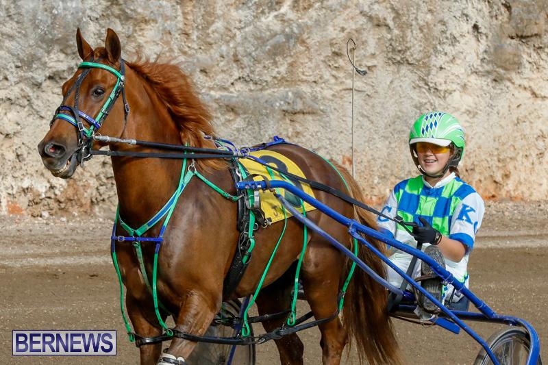 Harness-Pony-Racing-Bermuda-December-26-2017-8412