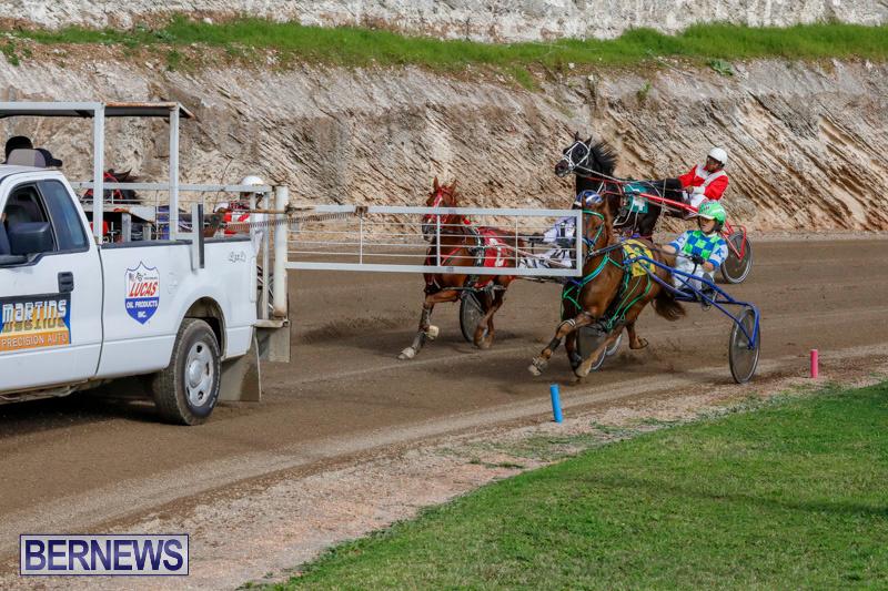 Harness-Pony-Racing-Bermuda-December-26-2017-8414