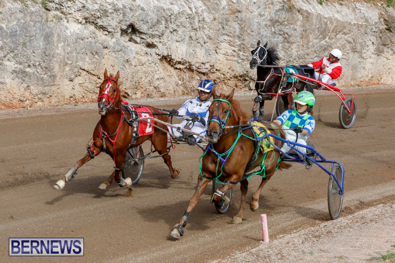 Harness-Pony-Racing-Bermuda-December-26-2017-8418