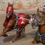 Harness Pony Racing Bermuda, December 26 2017-8421