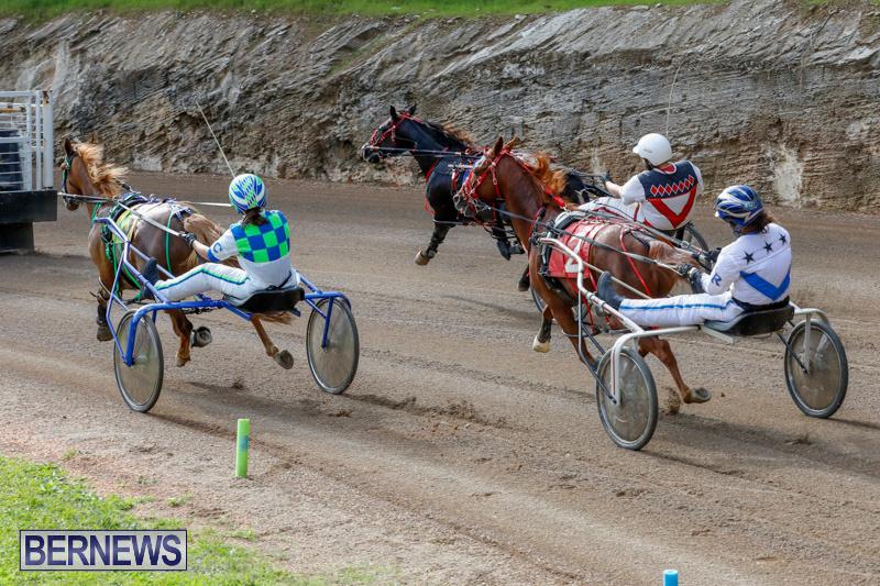 Harness-Pony-Racing-Bermuda-December-26-2017-8422