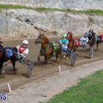 Harness Pony Racing Bermuda, December 26 2017-8430