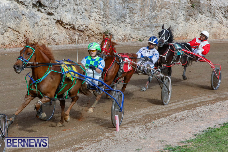 Harness-Pony-Racing-Bermuda-December-26-2017-8431